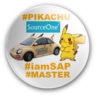 ☆Pramila Raj Jr.SAP FI ® Certified Associate Solution Practitioner™