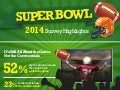 Burson-Marsteller Fan Experience Super Bowl Survey Highlights