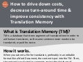Custom translation memory for consistency, efficiency and savings