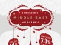 LinkedIn's Middle East Audience - 360 Infographic