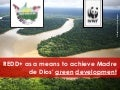 REDD+ as a means to achieve Madre de Dios' green development