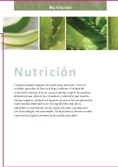 Forever Living Products - Sección N...