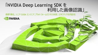 NVIDIA Deep Learning SDK を利用した画像認識
