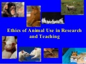 Research Methods: Ethics II (Animal...