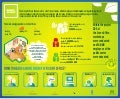 GREEN Infographic ENG