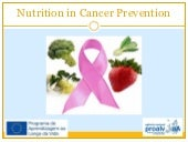 04.cancer prevention and nutrition ...
