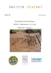 Archaeological Report - Mitchelstow...