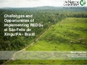Challenges and advances of implementing REDD+ at São Felix do Xingu