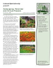 Xeriscaping: Perennial and Annual F...