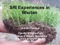 0846 SRI Experiences in Bhutan
