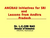 0848 ANGRAU Initiatives for SRI and...