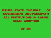0874 Tripura State: The Role of Gov...