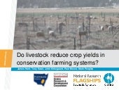Do livestock reduce crop yields in ...