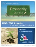 ROI Results in a Small Growth Economy