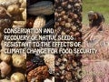 Conservation and Recovery of Native Seeds resistant to the Effects of Climate Change for Food Security