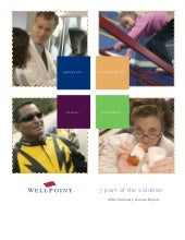 WellPoint 2004 summary annual report