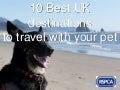 10 Best UK Destinations to Travel With Your Pet