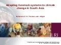Adapting livestock systems to climate change