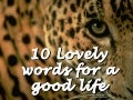 10 lovely words for a good life