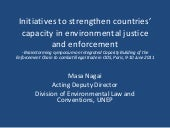 Unep's initiatives enforcement