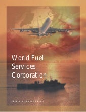 WorldFuel2002 Transition Annual Report