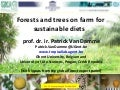 12 patrick-van-damme-forests-trees-for-sustainable-diets-tree-diversity-day-2014-cop12