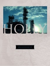 hollycorp.annualreport.2006