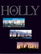 hollycorp.annualreport.2003