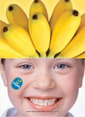 chiquita brands international 2004a...