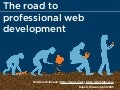 The road to professional web development