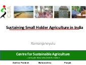 130601 sustainaing small holder agriculture