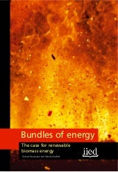 Bundles of Energy: The Case for Ren...