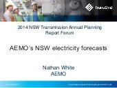 2014 Transmission Annual Planning Report - AEMO NSW forecast