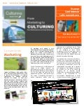 "Etnomarketing ""From Marketing to Culturing"""