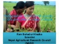 1412 - Performance of the USHA Weeder in Rice and Other in Crops in Nepal
