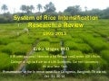 1424 - System of Rice Intensification Research - A Review