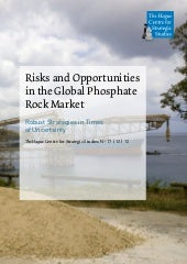 Risks and Opportunities in the Glob...