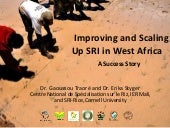 1507 - Improving and Scaling Up SRI in West Africa - A Success Story