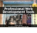 Professional web development with libraries