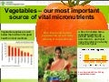 Vegetables—our most important source of vital micronutrients