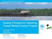 Guiding Principles for Delivering Coastal Wetland Carbon Projects
