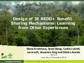 Design of 3E REDD+ Benefit Sharing Mechanisms: Learning from Other Experiences