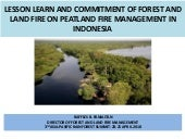 Lessons learned and commitment of forest and land fire on peatland fire management in Indonesia