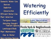 FYN Principle #2 - Water Efficiently