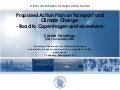 Proposed Action Plan on Transport and Climate Change: Road to Copenhagen and elsewhere