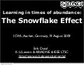 Learning in times of abundance:  The Snowflake Effect