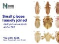 Small pieces loosely joined: getting louse research online.