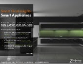 Smart Grid Appliance Report 2010 by...