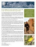 Spring 2010 Nevada Wilderness Project Newsletter