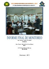 2011 informe final monitoreo